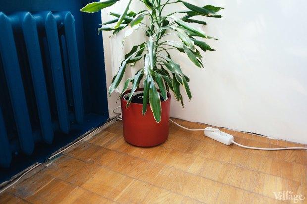 Эксперимент The Village: Сколько одинаковых вещей в современных квартирах. Изображение № 13.