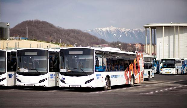 На городские маршруты выйдут олимпийские автобусы. Изображение № 1.