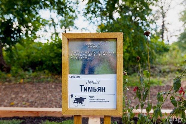 Фото дня: Что изменилось в Ботаническом саду. Изображение № 3.