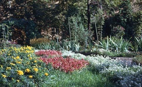 Сад Травникова в 60-е годы. Изображение № 3.