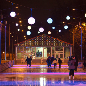Планы на зиму: Развлечения впарках. Изображение №1.