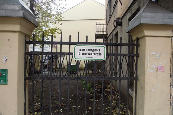 В Петербурге появились партизанские знаки. Изображение № 6.
