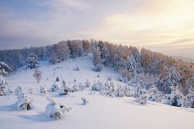 Где заниматься зимними  видами спорта. Изображение № 30.