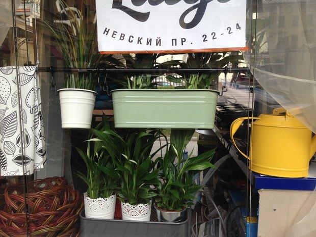 На Невском откроется летнее кафе Luigi с бургерами и хот-догами. Изображение № 1.