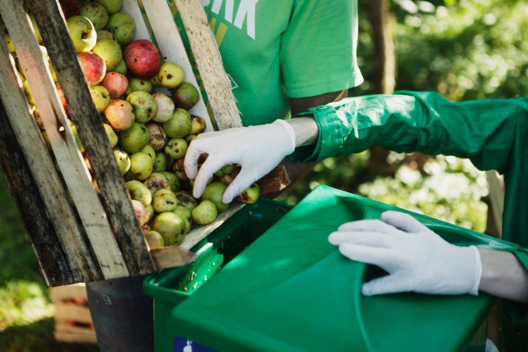 Партия «Яблоко»: Как организовать производство сидра на даче . Изображение № 3.