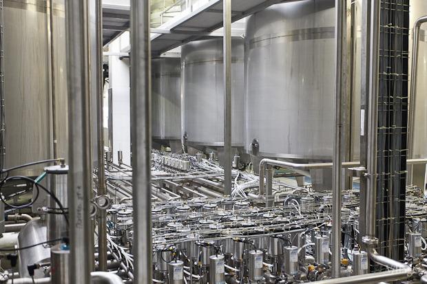 Фоторепортаж: Как делают йогурты на молочном заводе. Изображение № 20.