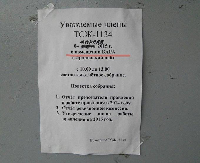 Фото: «Новости Купчино». Изображение № 1.