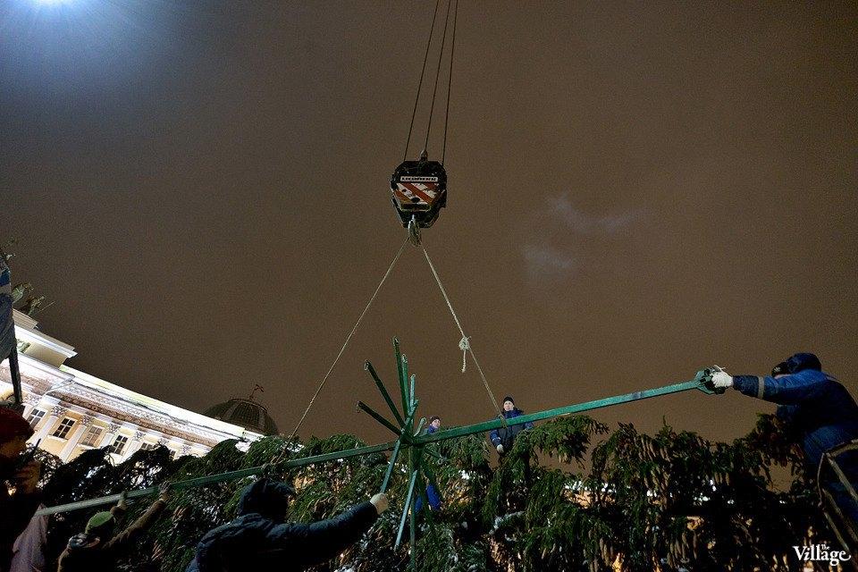 Фоторепортаж: Как устанавливали главную петербургскую ёлку. Изображение № 23.