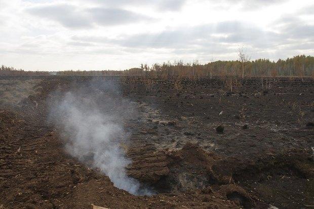 Greenpeace опричинах октябрьского смога вМоскве. Изображение № 3.