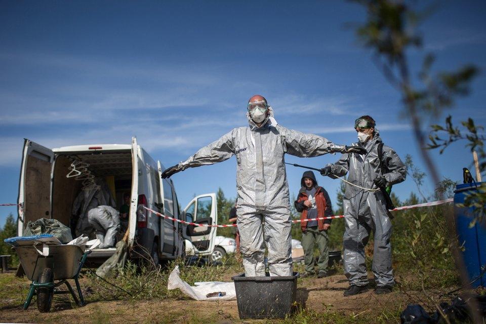 Как леса Коми очищают от нефти. Изображение № 11.