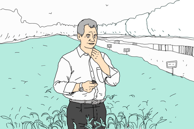 Лето Шойгу: Как меняется Подмосковье. Изображение №5.