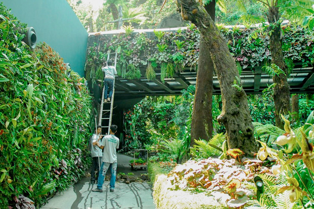 Идеи для города: Механический лес вСингапуре. Изображение № 22.
