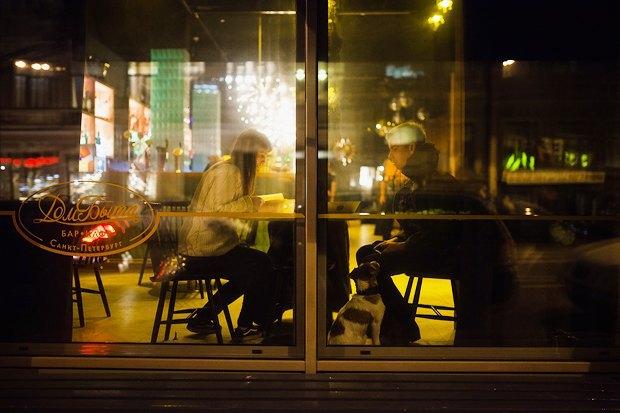 Вкакие кафе пускают ссобакой. Изображение № 1.