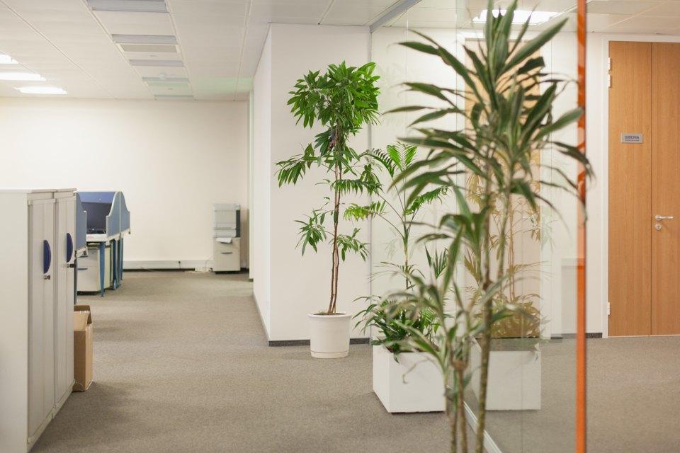 Как работают в SAP. Изображение № 12.