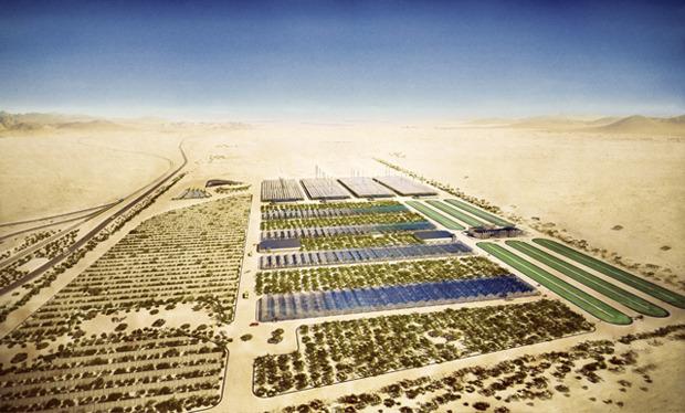 Дизайн от природы: Дом-термитник, жилая дюна и оранжереи в пустыне. Изображение №20.