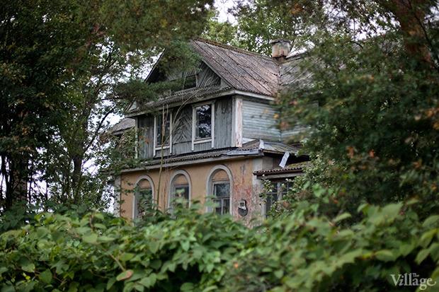 Дом на дереве: Жители Лахты за месяц до строительства небоскреба. Изображение № 32.