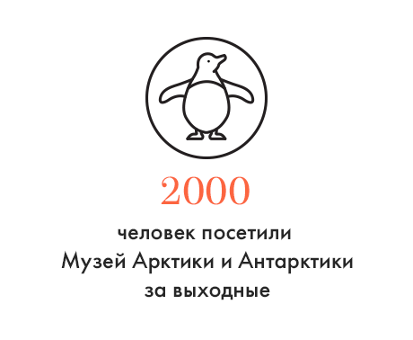 Цифра дня: Всплеск популярности Музея Арктики и Антарктики. Изображение № 1.