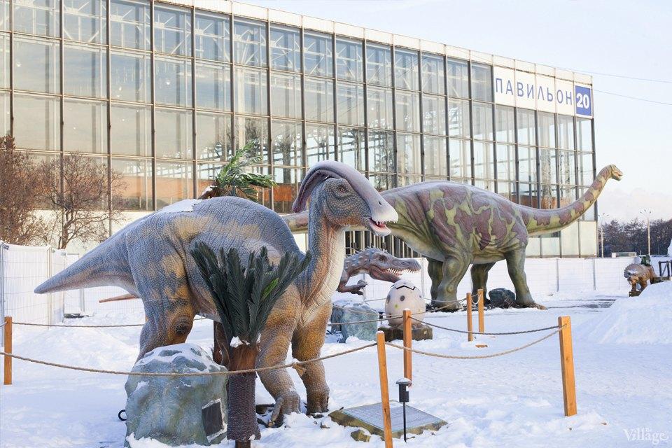Фоторепортаж: Парк динозавров на ВВЦ. Изображение № 6.