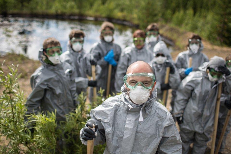 Как леса Коми очищают от нефти. Изображение № 2.