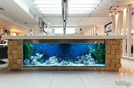 На Крещатике открылся ресторан с суши-конвейером. Изображение № 7.