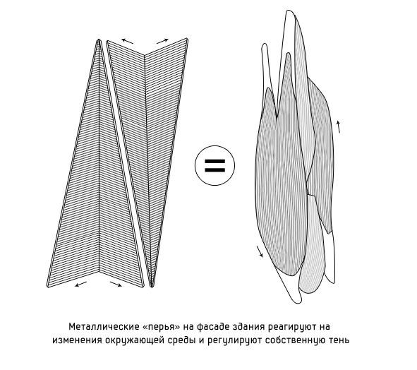 Дизайн от природы: Стекло-паутина и павильон — морской еж в Германии. Изображение № 19.