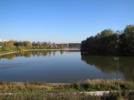 Большой городской пруд, (г. Зеленоград), zlngrd.ru. Изображение № 2.