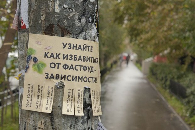 В Москве появилась горячая линия для борьбы с зависимостью от фастфуда. Изображение № 3.