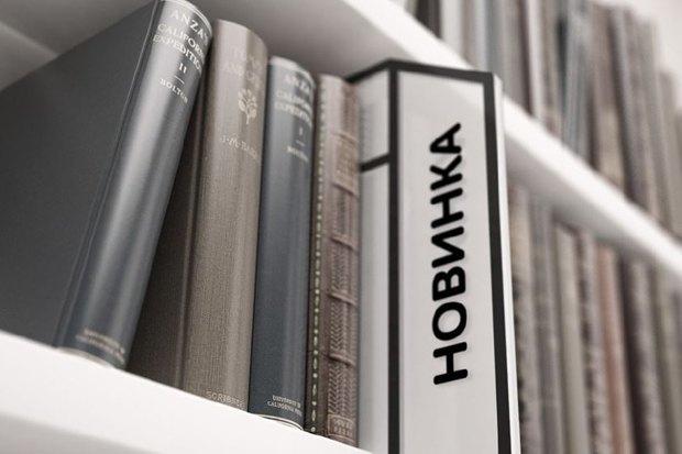 Московским библиотекам создали единый фирменный стиль. Изображение № 3.