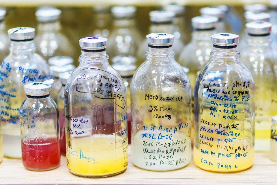 Микробиолог Андрей Шестаков— ополезных микробах, вреде молока ифинансировании науки. Изображение № 16.