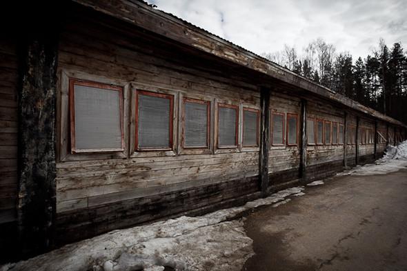 Народное хозяйство: 5 ферм, продукты которых можно купить в Петербурге. Изображение № 99.