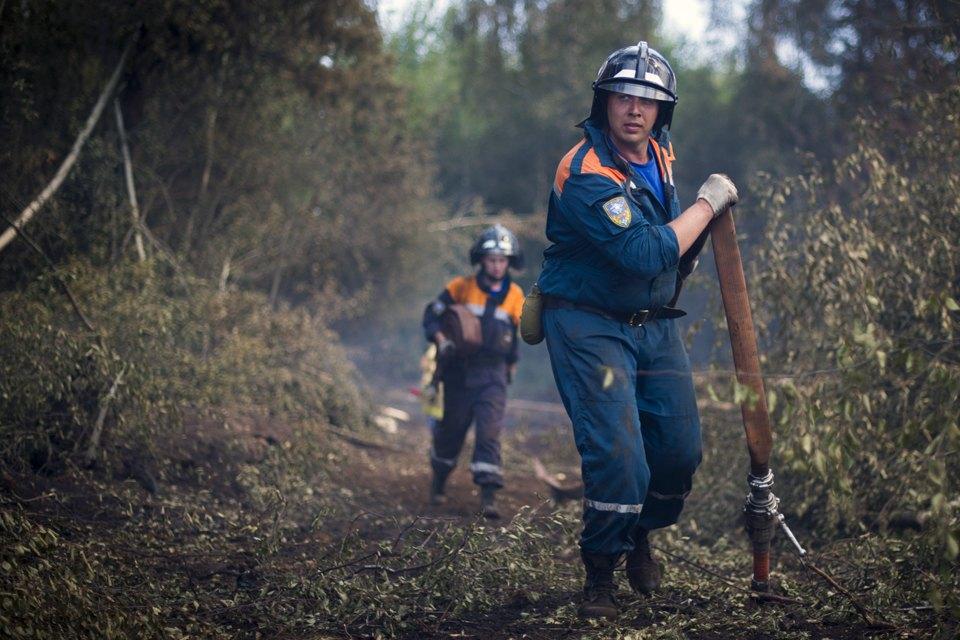 Как тушат лесные пожары вТверской области. Изображение № 4.