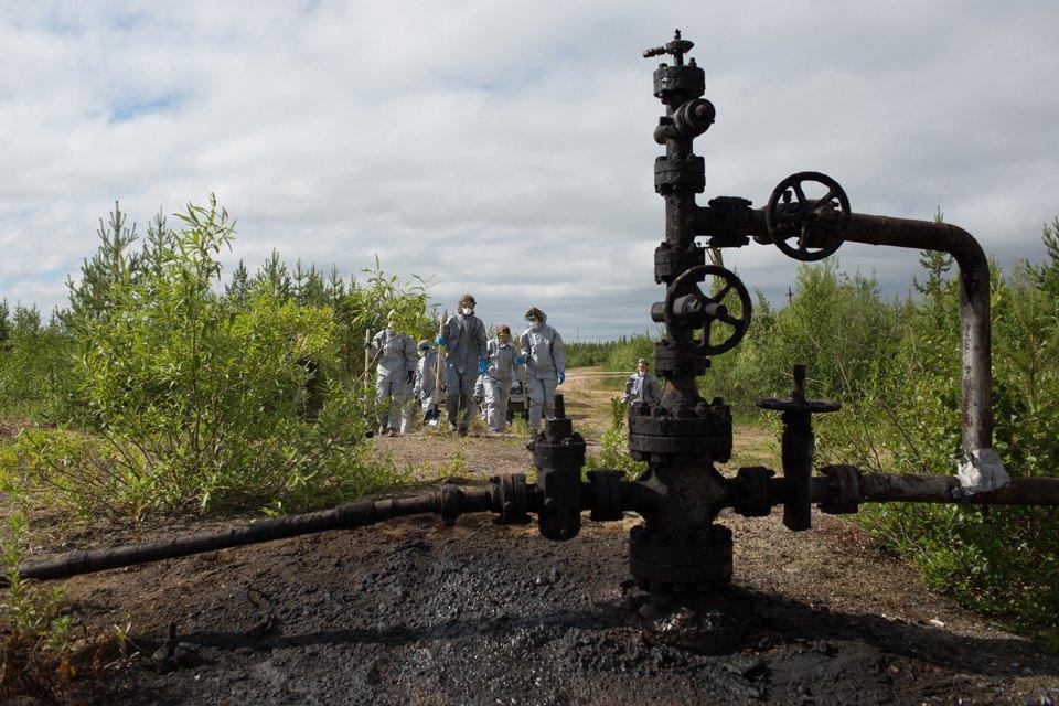 Как леса Коми очищают от нефти. Изображение № 15.