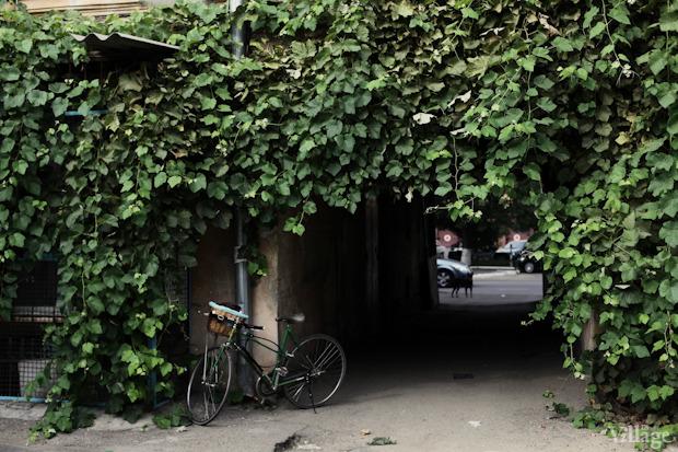 По ту сторону: Прогулка по одесским дворикам. Зображення № 49.