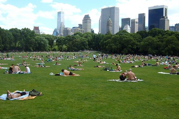 Интервью: Директор Центрального парка Нью-Йоркао привлечении инвестиций, площадке и «Зарядье». Изображение №35.