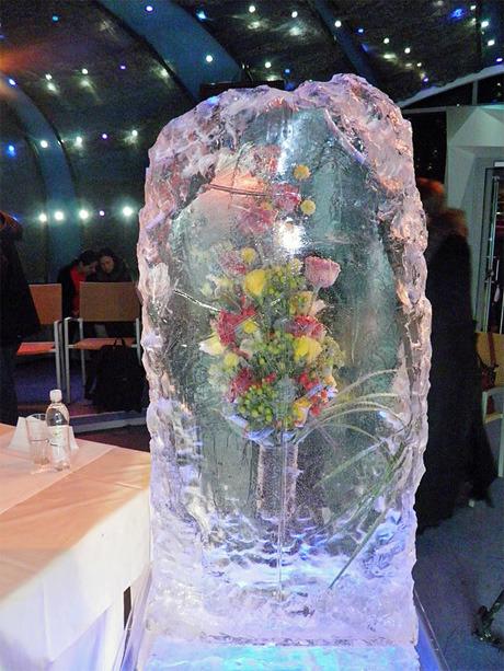 На Певческом поле выставят композиции из цветов во льду. Зображення № 4.