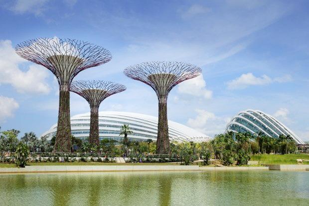 Идеи для города: Механический лес вСингапуре. Изображение №12.