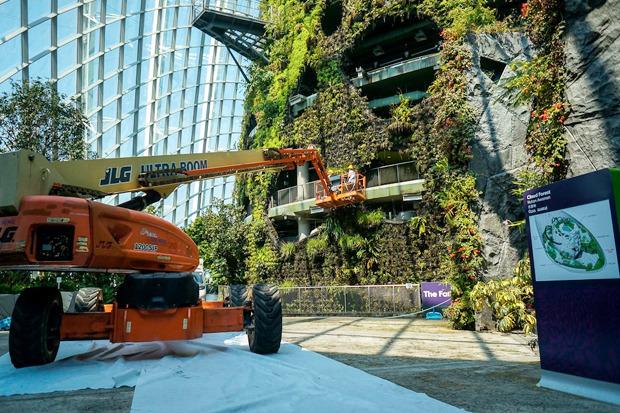 Идеи для города: Механический лес вСингапуре. Изображение № 21.