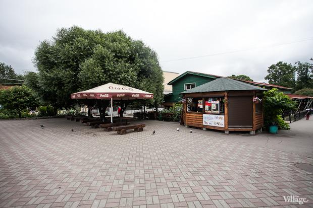 Как живёт и меняется Ленинградский зоопарк . Изображение № 8.