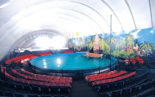 В Петербурге даст представления гастролирующий шатёр-дельфинарий. Изображение № 2.
