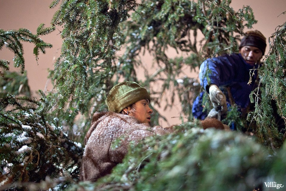 Фоторепортаж: Как устанавливали главную петербургскую ёлку. Изображение № 28.