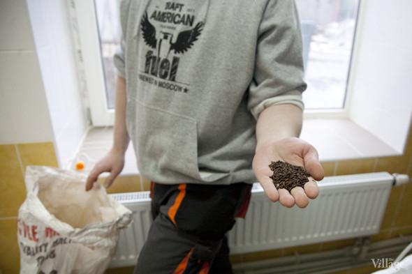 Репортаж: Как варят пиво в частной московской пивоварне. Изображение № 8.