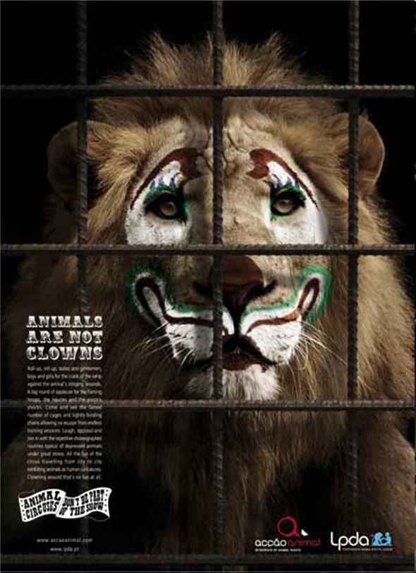 Социальная реклама португальского агенства Partners Lisboa: «Животные не клоуны», «Животный цирк: не будьте частью шоу». Изображение № 7.