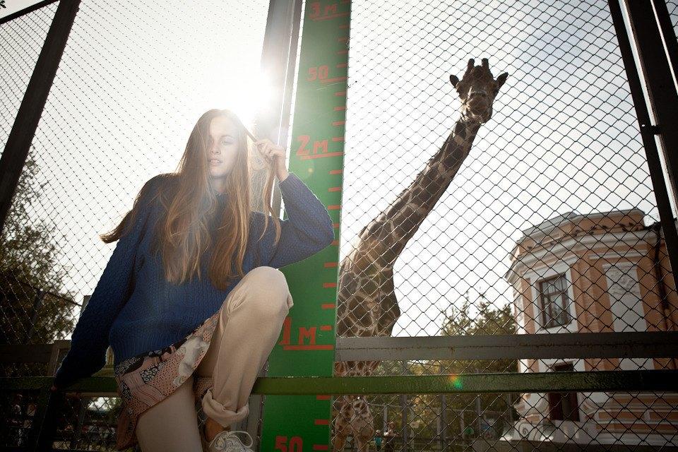 Cъёмка: Осень в зоопарке. Изображение № 1.