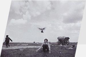 Пикник «Афиши», «Отзаката дорассвета» набольшом экране, «Травиата» наВДНХ иещё 15 событий. Изображение № 9.