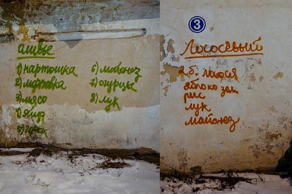 Совместные работы Игоря и Ксении Колесниковой New year's night, ночь с 31 декабря 2008 на 1 января 2009. Изображение № 11.