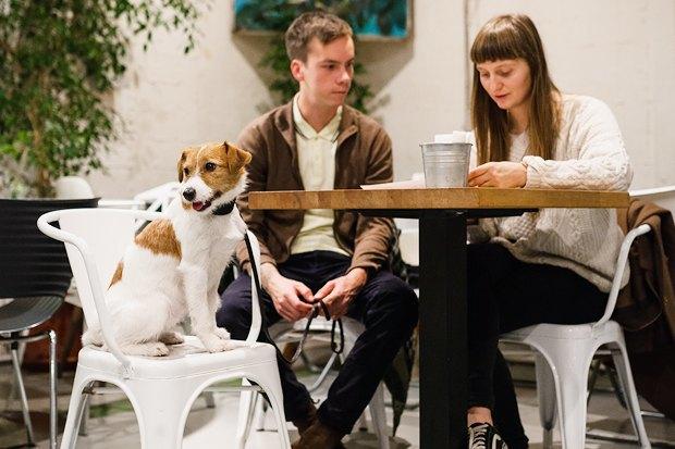 Вкакие кафе пускают ссобакой. Изображение № 3.