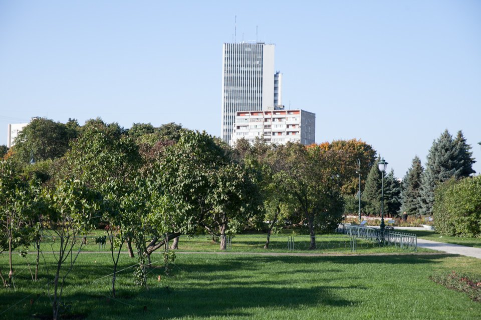Обновлённый Сиреневый сад наЩёлковском шоссе. Изображение № 22.