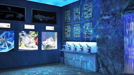 Один из залов с аквариумами. Изображение № 2.
