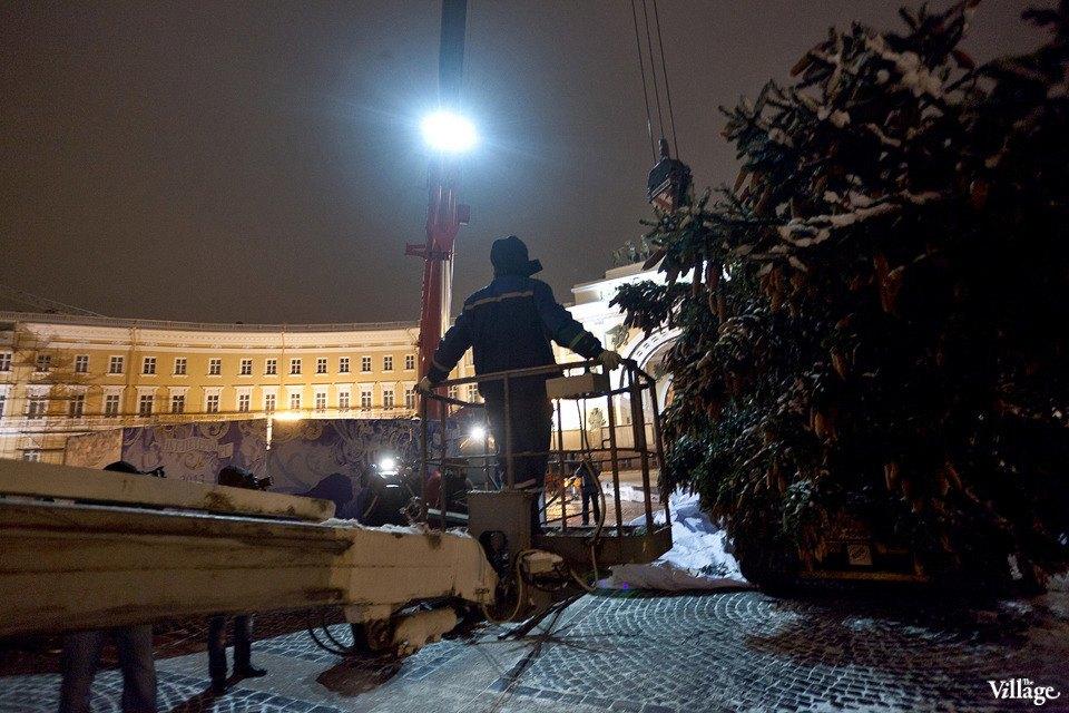 Фоторепортаж: Как устанавливали главную петербургскую ёлку. Изображение № 21.