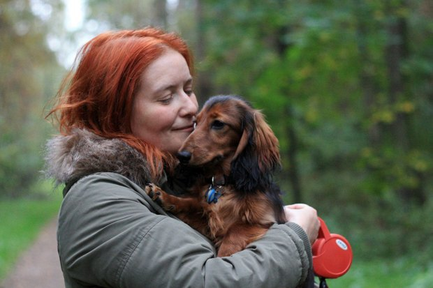 «Пустой поводок»: Как владельцы собак борются сэпидемией отравлений . Изображение № 1.